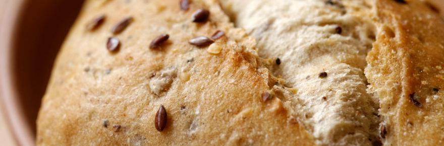 Dr. Smarty Flour Alternatives for Gluten Free